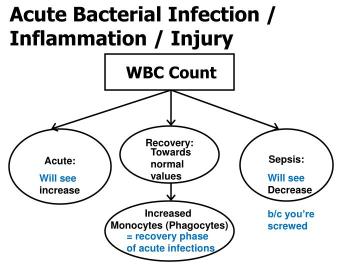 Acute Bacterial Infection / Inflammation / Injury