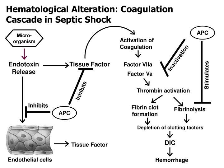 Hematological Alteration: Coagulation