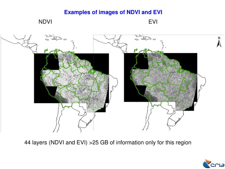 Examples of images of NDVI and EVI