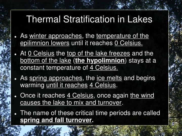 Thermal Stratification in Lakes
