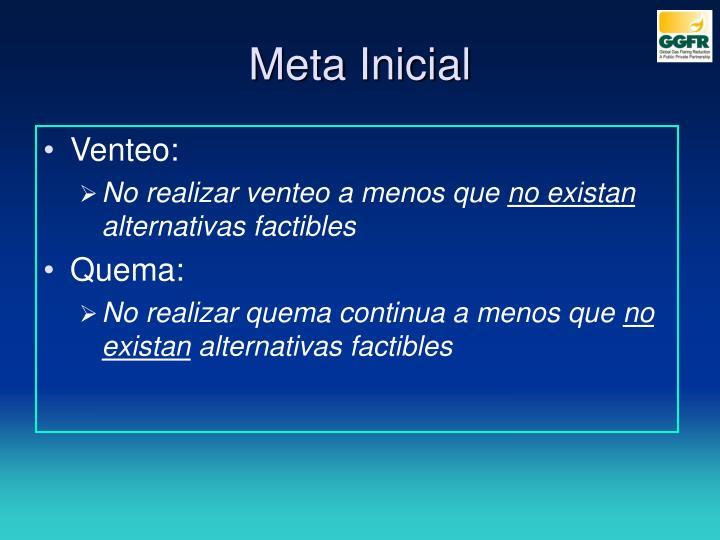 Meta Inicial
