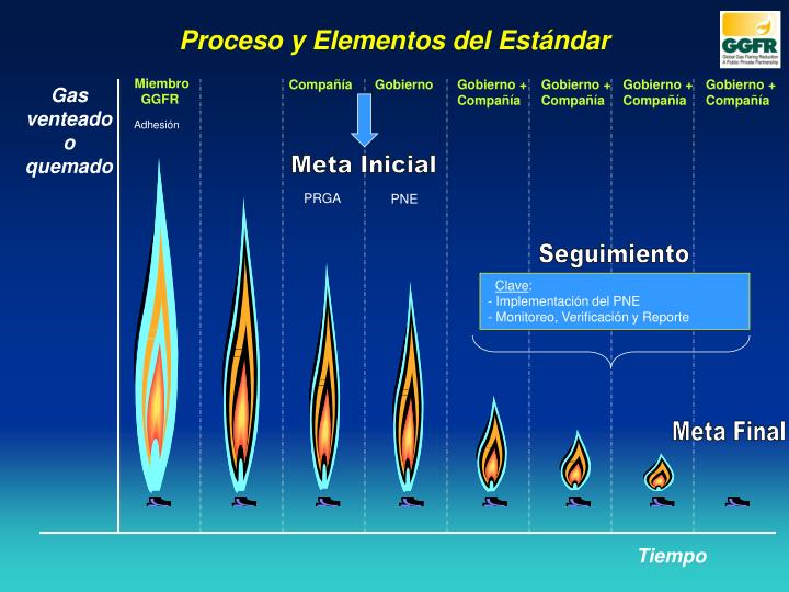 Proceso y Elementos del Estándar