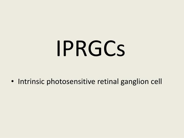 IPRGCs
