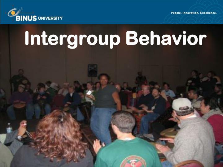 Intergroup behavior