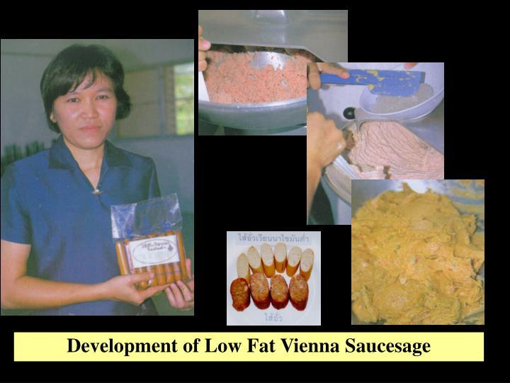 Development of Low Fat Vienna Saucesage