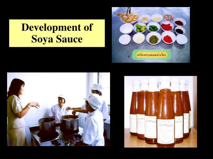Development of Soya Sauce