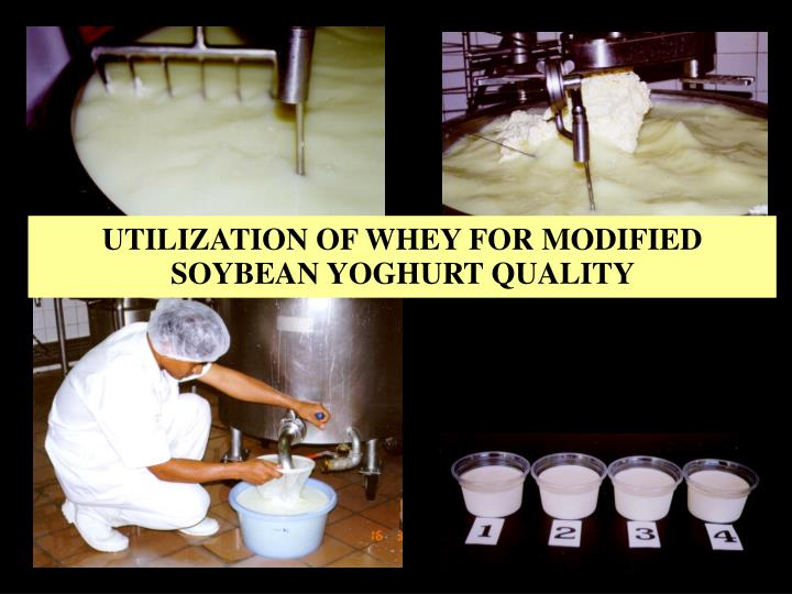 UTILIZATION OF WHEY FOR MODIFIED SOYBEAN YOGHURT QUALITY
