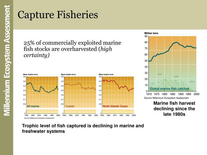 Capture Fisheries