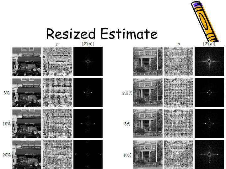 Resized Estimate
