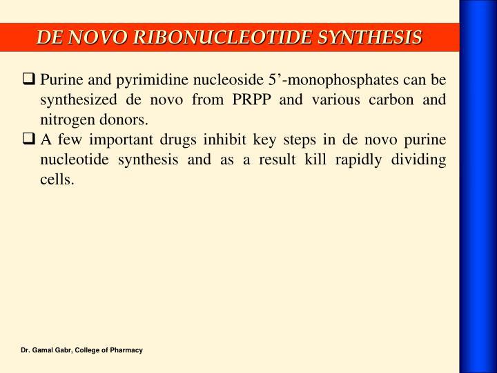 DE NOVO RIBONUCLEOTIDE SYNTHESIS