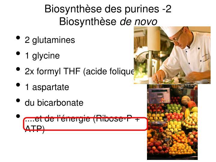 Biosynthèse des purines -2