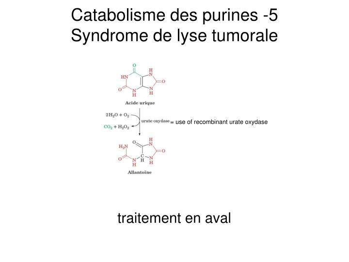 Catabolisme des purines -5