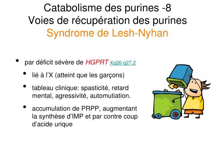 Catabolisme des purines -8