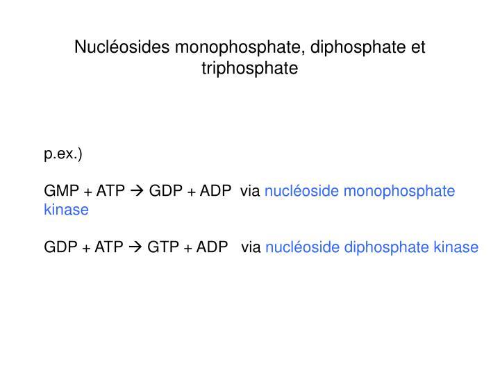 Nucléosides monophosphate, diphosphate et triphosphate