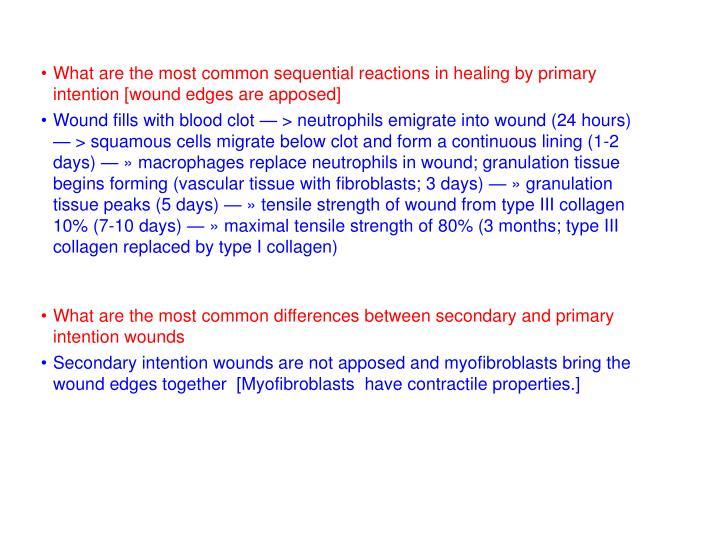 What are the most common sequential reactions in healing by primary intention [wound edges are apposed]