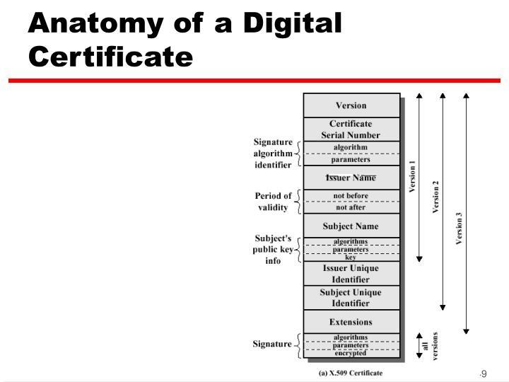 Anatomy of a Digital Certificate