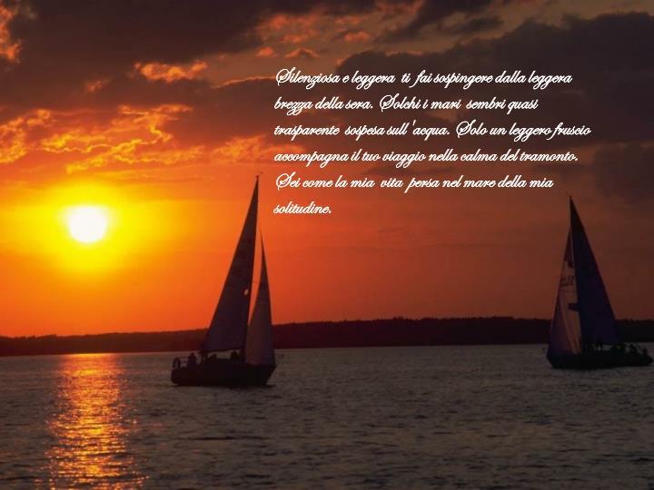 Silenziosa e leggera  ti  fai sospingere dalla leggera brezza della sera. Solchi i mari  sembri quasi trasparente  sospesa sull'acqua. Solo un leggero fruscio accompagna il tuo viaggio nella calma del tramonto. Sei come la mia  vita  persa nel mare della mia  solitudine.