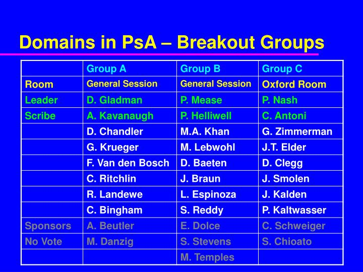 Domains in PsA – Breakout Groups