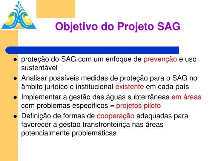 Objetivo do Projeto SAG