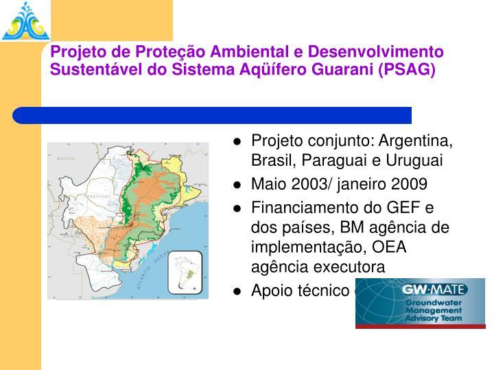 Projeto conjunto: Argentina, Brasil, Paraguai e Uruguai