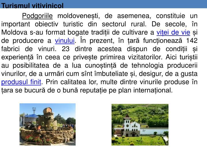 Turismul vitivinicol