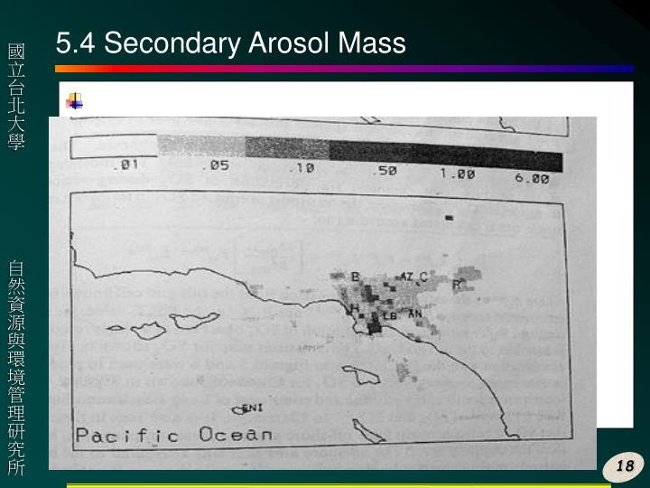 5.4 Secondary Arosol Mass