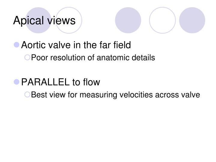 Apical views