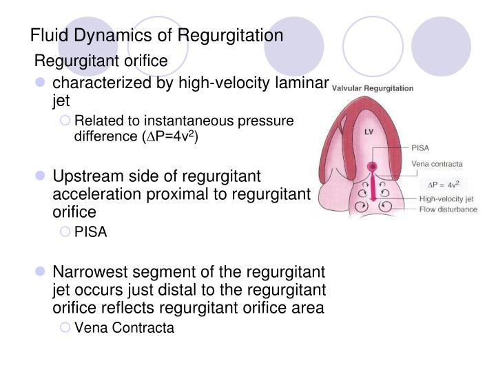 Fluid Dynamics of Regurgitation