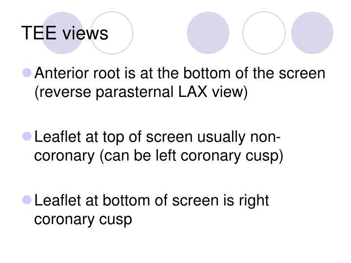 TEE views