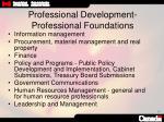 professional development professional foundations