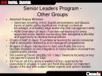 senior leaders program other groups