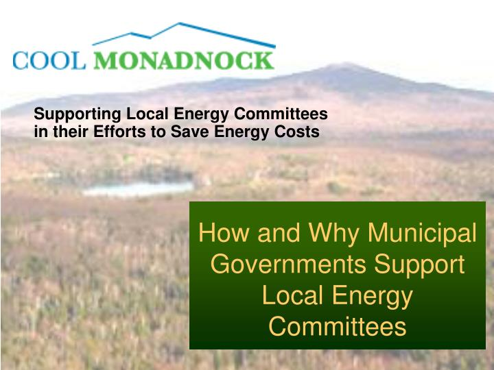 supporting local energy committees in their efforts to save energy costs n.