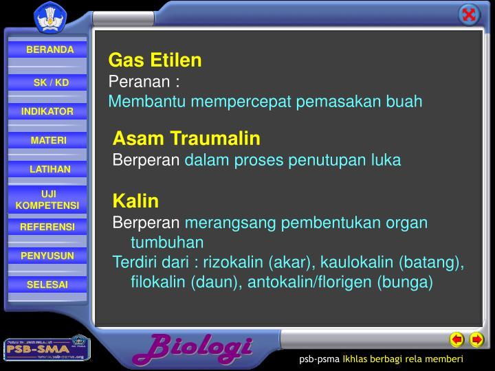 Gas Etilen
