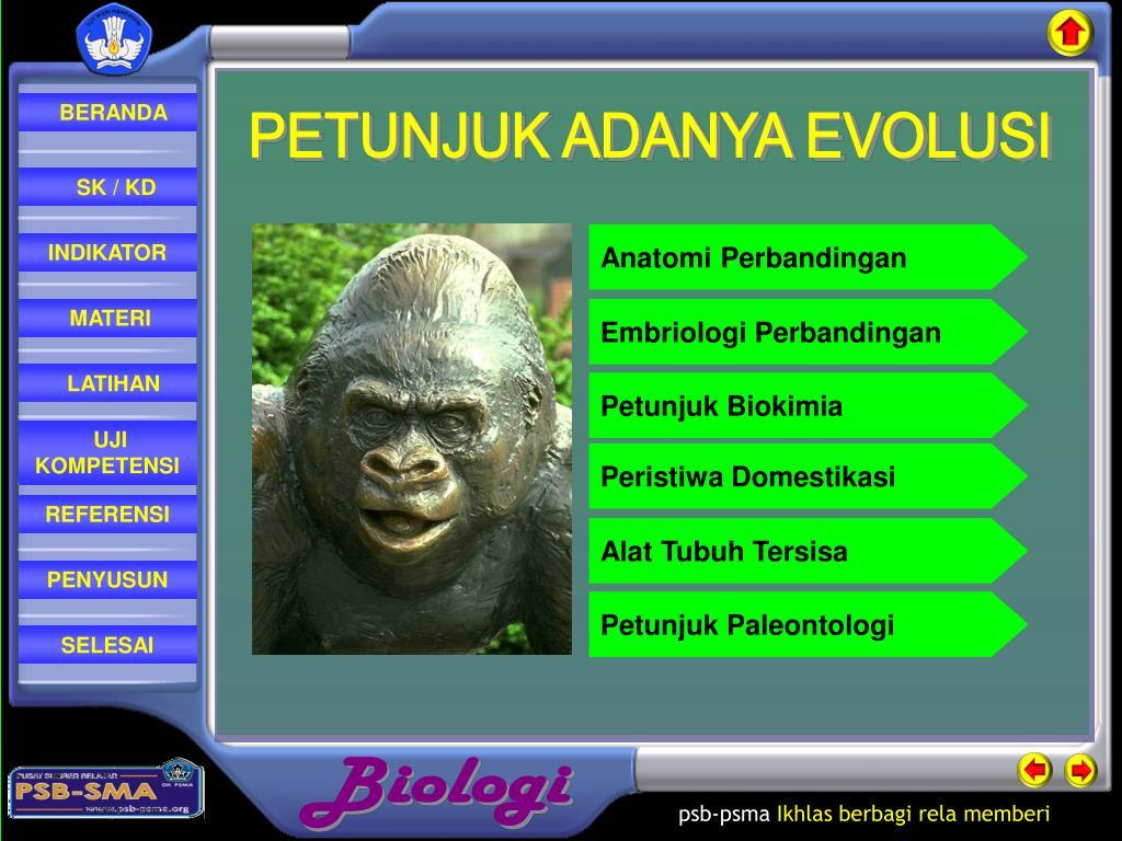 Petunjuk tentang adanya evolusi ppt presentation