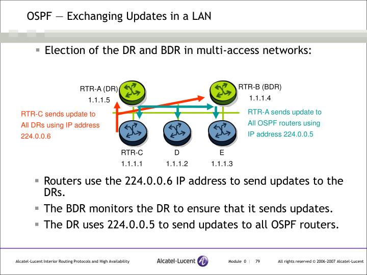 OSPF — Exchanging Updates in a LAN