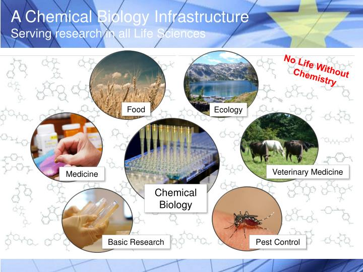 A Chemical Biology Infrastructure
