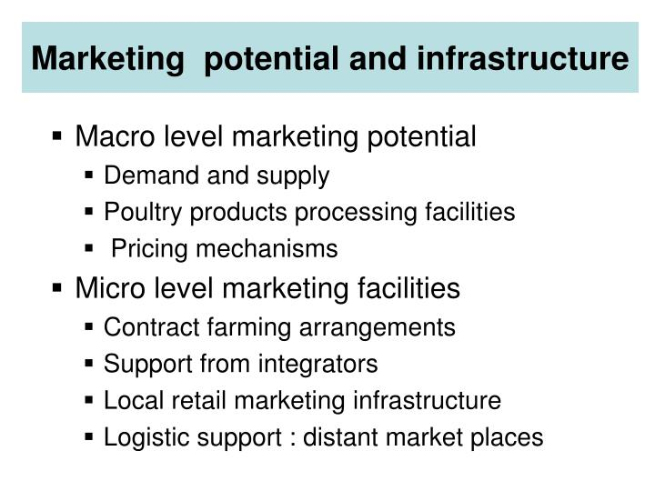 Marketing  potential and infrastructure