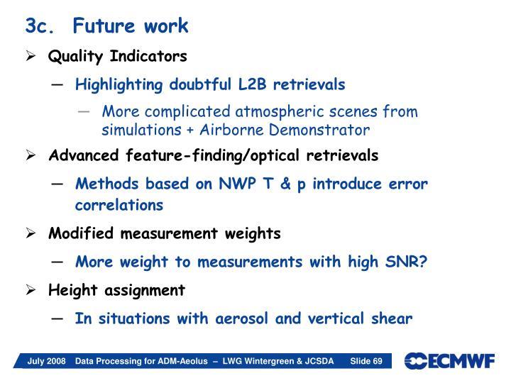 3c.  Future work