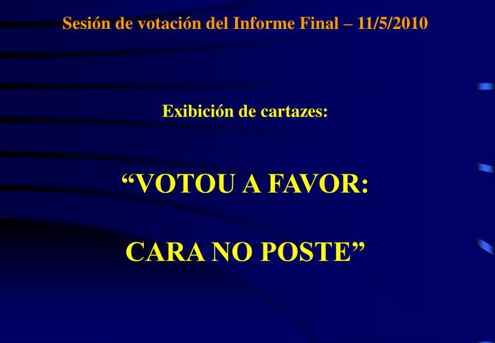 Sesión de votación del Informe Final – 11/5/2010