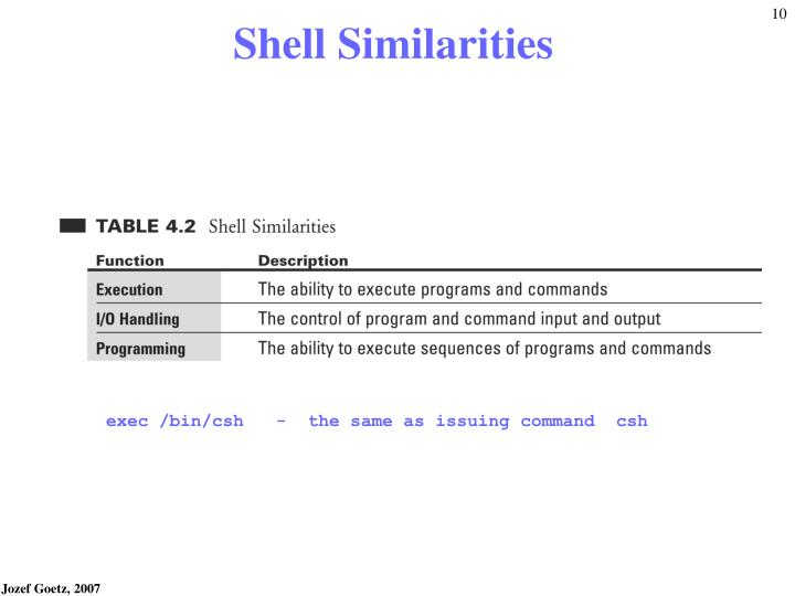 Shell Similarities