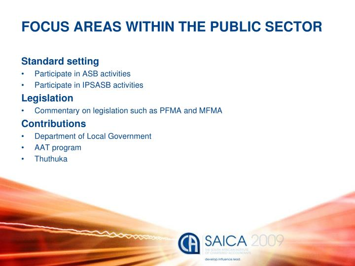 FOCUS AREAS WITHIN THE PUBLIC SECTOR