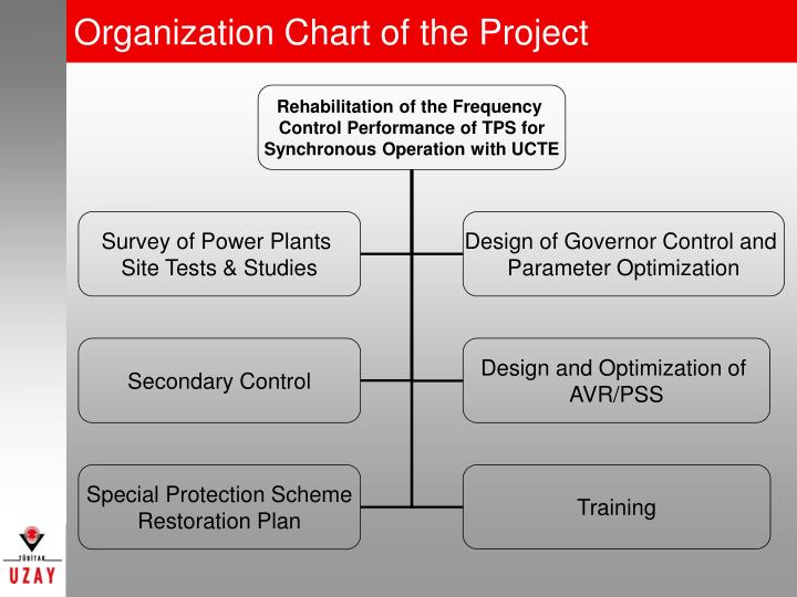 Organization Chart of the Project