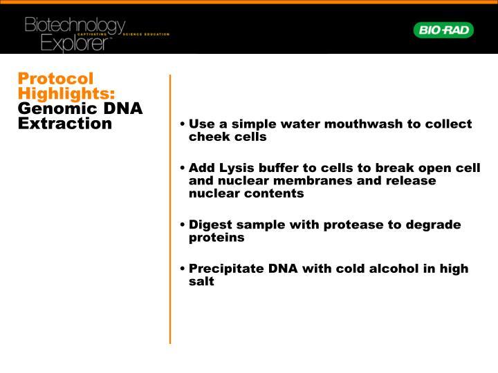 Protocol Highlights: