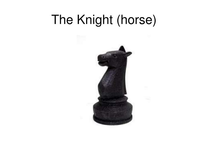 The Knight (horse)