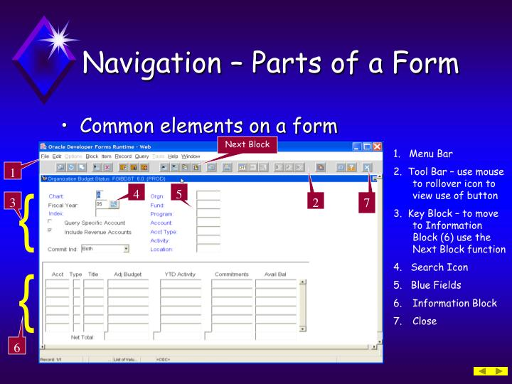 Navigation – Parts of a Form