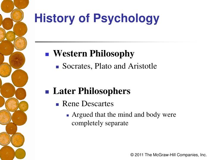 plato, descartes, and the matrix essay While the matrix and in plato's excerpt there is a lot of dialogue, descartes argument is highly a monologue this gives the first two pieces a sense of life in the matrix the supernatural power comes from a synthetic pill red pill while in plato's and descartes's excerpts.
