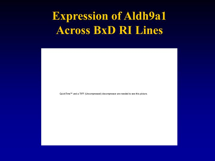 Expression of Aldh9a1 Across BxD RI Lines