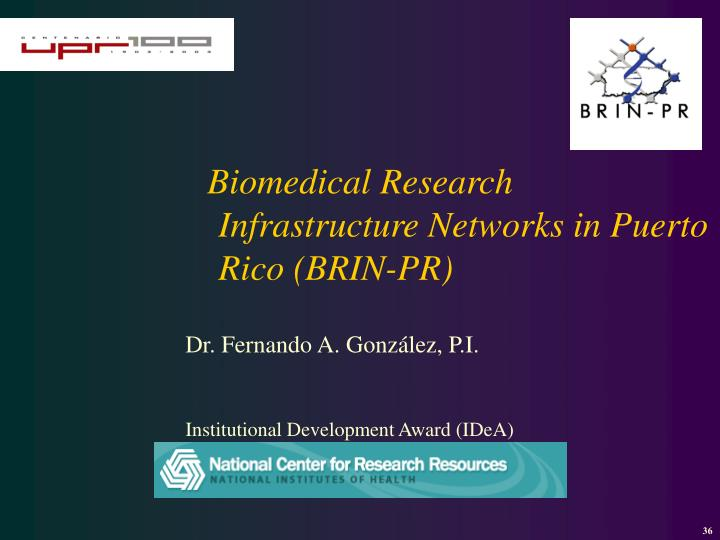 Biomedical Research Infrastructure Networks in Puerto Rico (BRIN-PR)