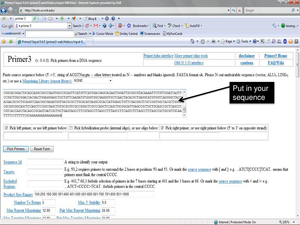 Ppt Primer Design Powerpoint Presentation Free Download Id 4749803