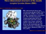 three dimensional structures of the insulin receptor tyrosine kinase irk